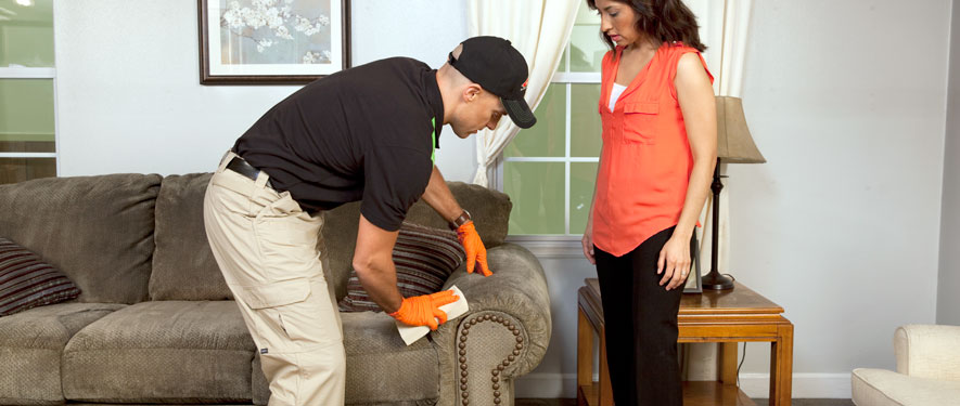 Lawrenceville, IL carpet upholstery cleaning